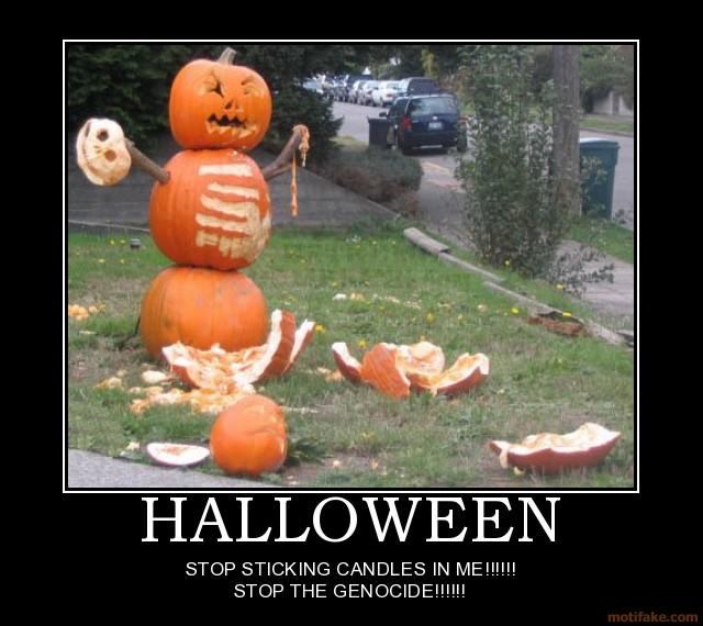 Funny Meme Halloween : Halloween meme funny imgkid the image kid has it