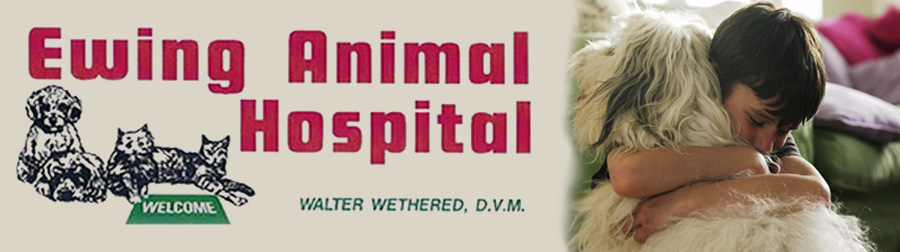 Ewing Animal Hospital