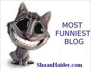 The 5 Funniest, but Lesser-Known, Blogs to Follow