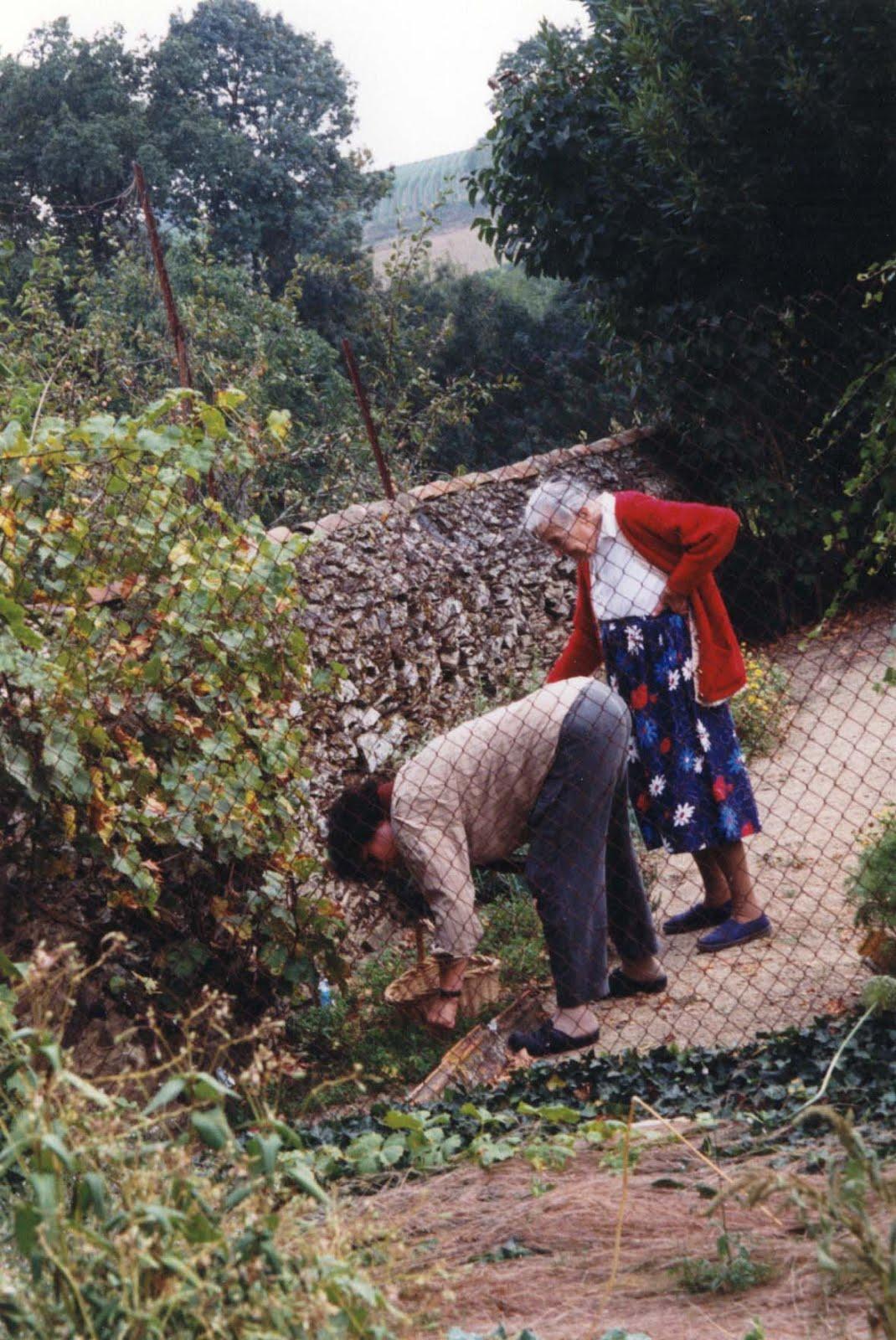 10 ans sans mfre dans le jardin de nueil - Mamie baise dans le jardin ...