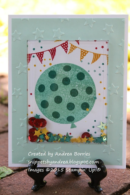Shaker card made with Celebrate Today stamp set and rectangle shaker pouch.