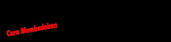Perbedaan ASUS Resmi dan ASUS Zenfone BM