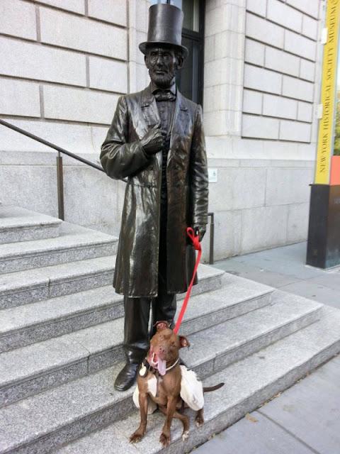 Abraham Lincoln sujetame al perro