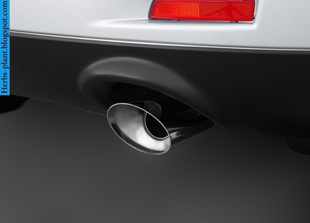 Nissan murano car 2013 exhaust - صور شكمان سيارة نيسان مورانو 2013