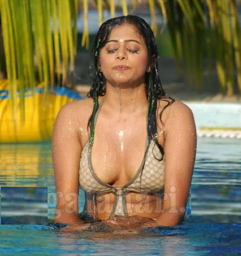 Trisha navel kiss images