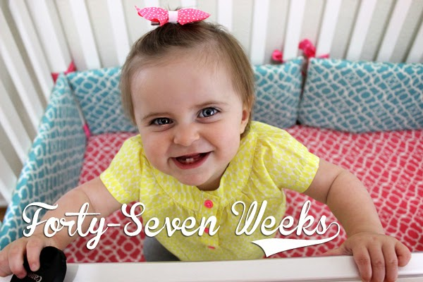 http://meetthegs.blogspot.com/2014/05/lilly-anne-47-weeks.html