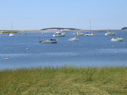 Wellfleet Harbor, South of the Marina