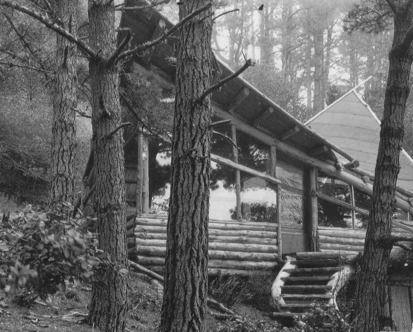 A longhouse birdhouse handmade houses for Longhouse birdhouse