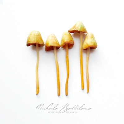 Fairy Mushrooms - Nichola Battilana