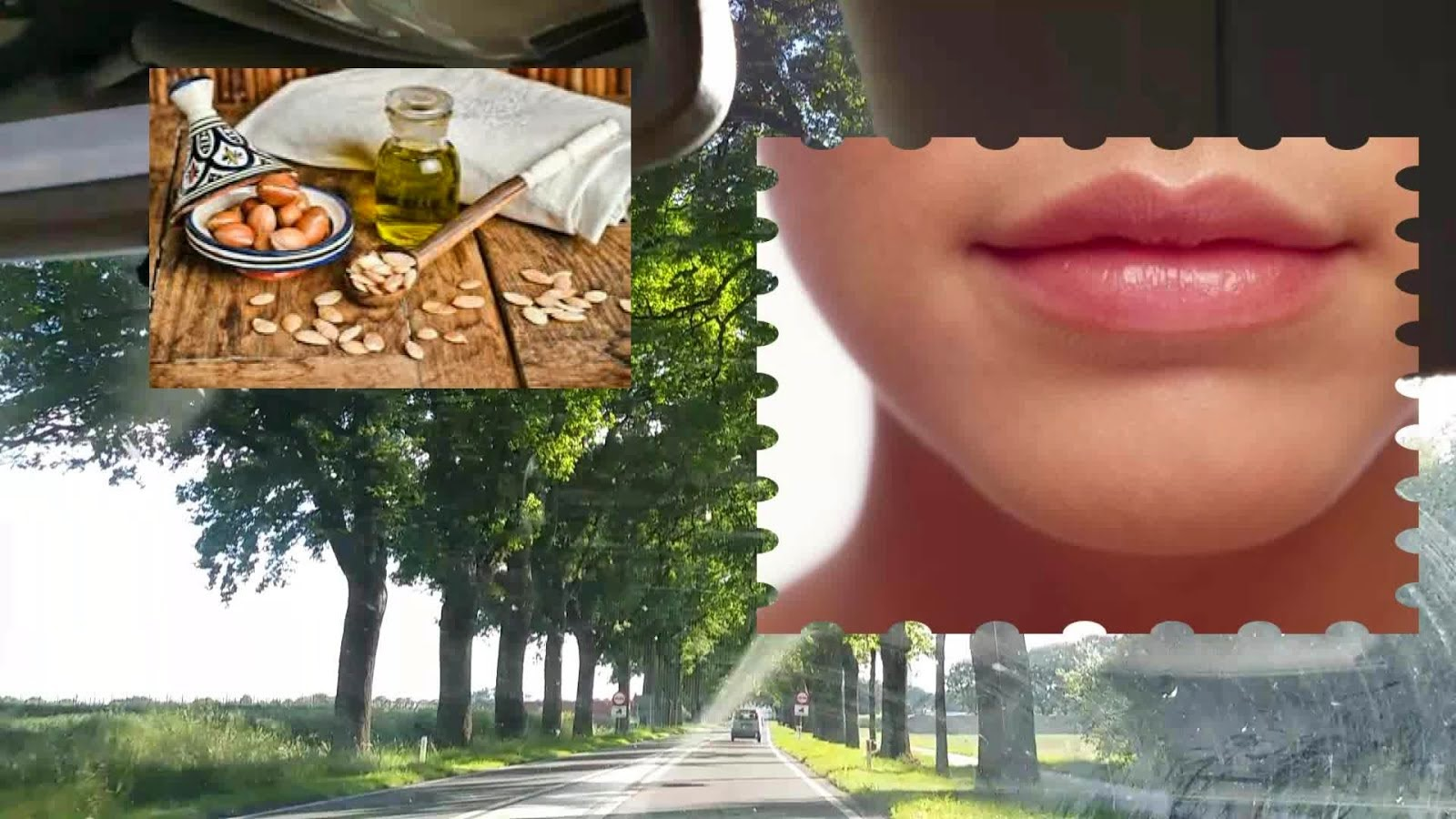 video link argan Öl