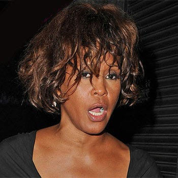 CRIME GUNS AND VIDEOTAPE Now Its Time To Slam Whitney
