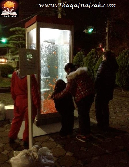 aquariumbooth04 أسماك في كابينة الهاتف
