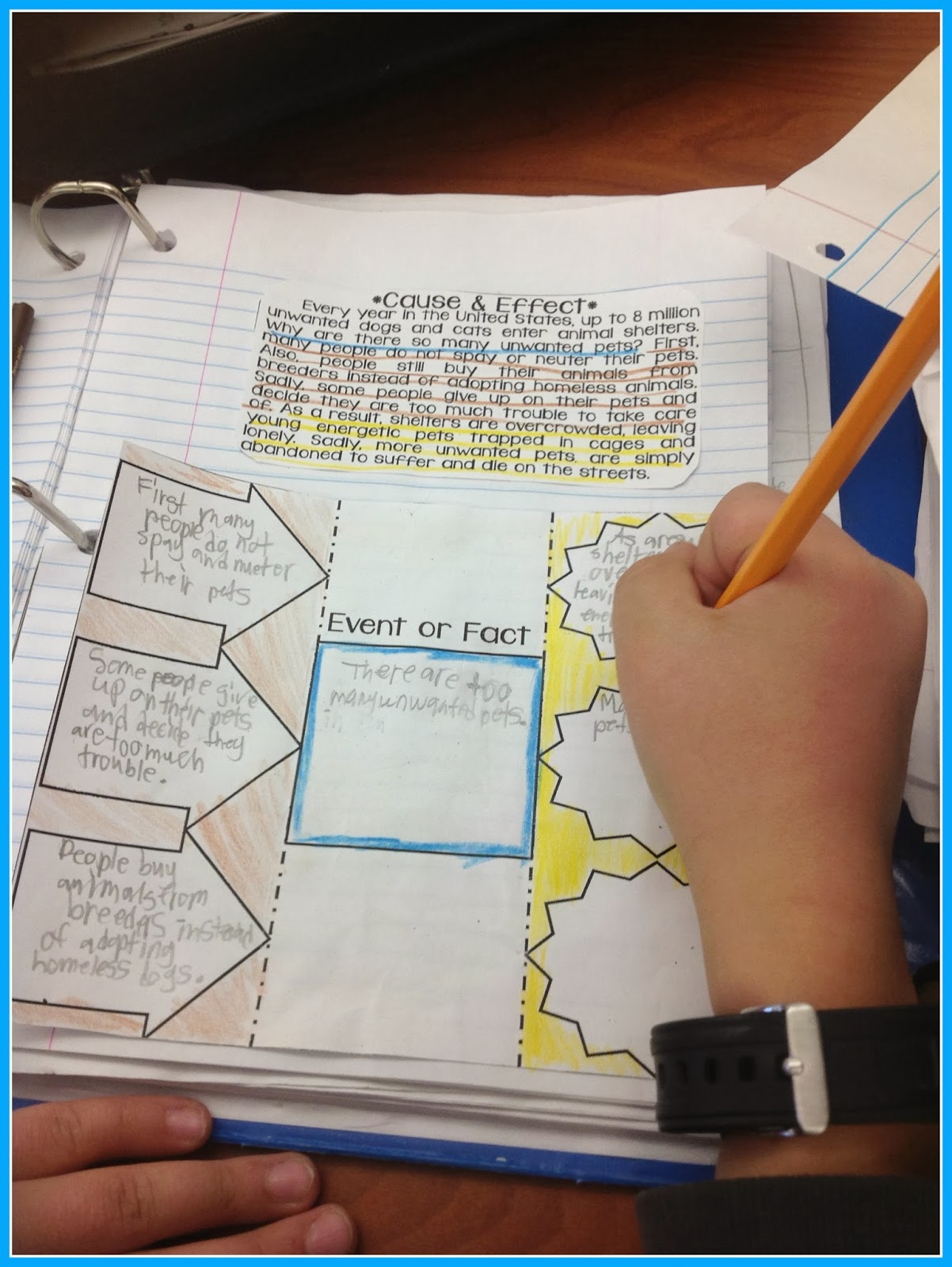 teaching a mountain view informational text structures and foldable from the interactive notebooks each day erin from i m lovin lit has included separate paragraphs and lessons for each different structure