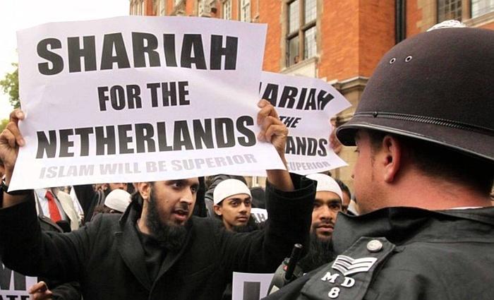 Lo que piensan los musulmanes
