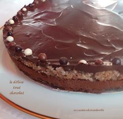 mousse chocolat sur dacquoise noisette