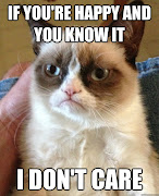 Even more Grumpy Cat