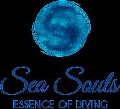 Sea Souls Diveresort Bangka island