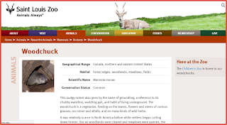 http://www.stlzoo.org/animals/abouttheanimals/mammals/rodents/woodchuck/