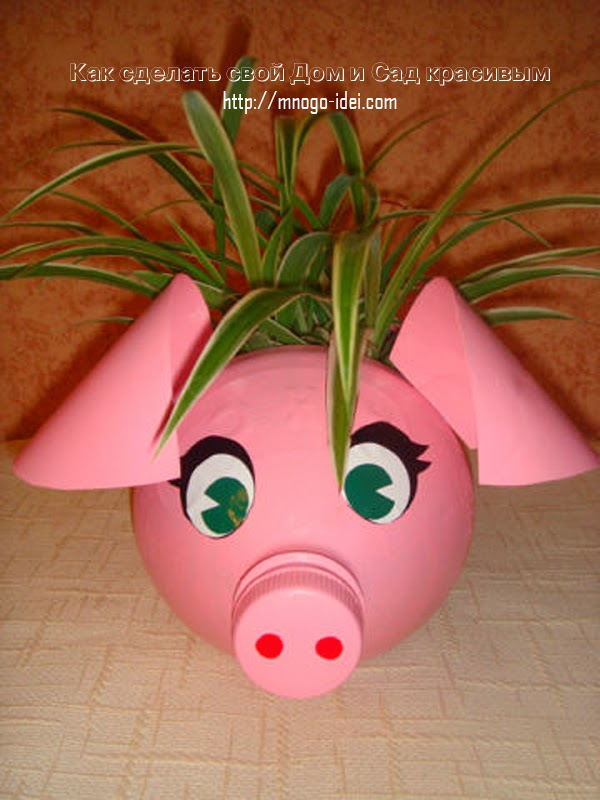 DIY Plastic Bottle Piggy Planter