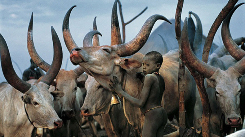 Poderosas fotografías muestran la vida cotidiana de la tribu Dinka de Sudán del Sur