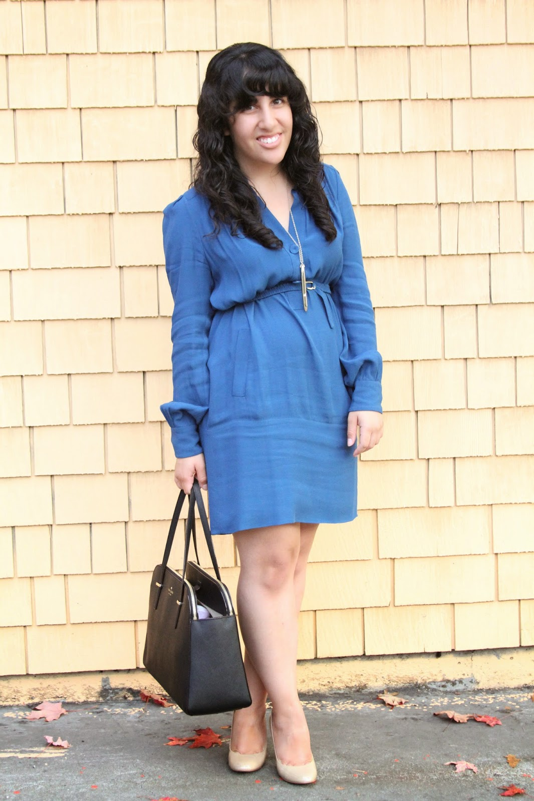 DVF Blue Tunisa Dress