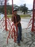 Sazli Along