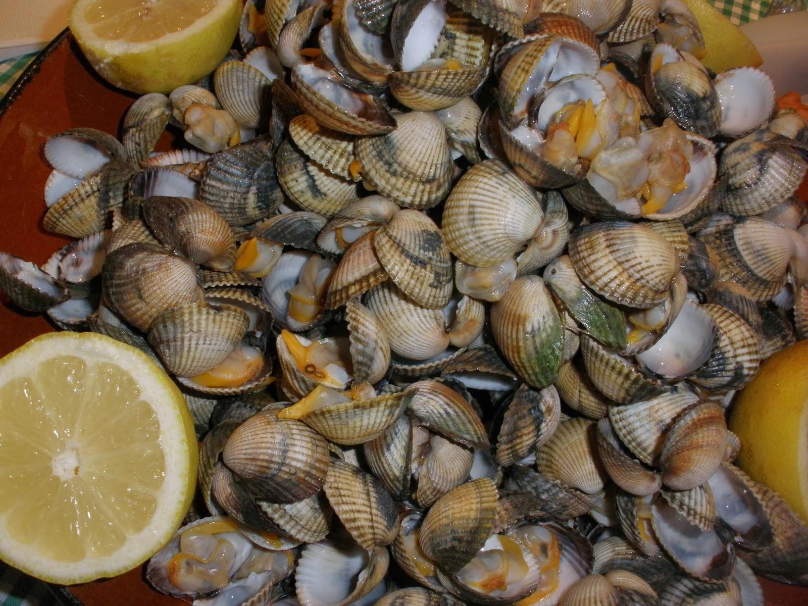 Recursos culinarios c mo se cuecen los berberechos - Como cocinar berberechos ...