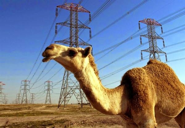 Казахстан, Кыргызстан и Таджикистан хотят создать единую энергосистему в обход Узбекистана