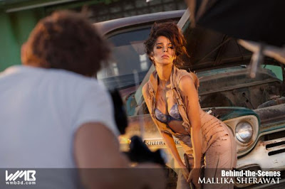 Mallika Sherawat Show Cleavage Pics