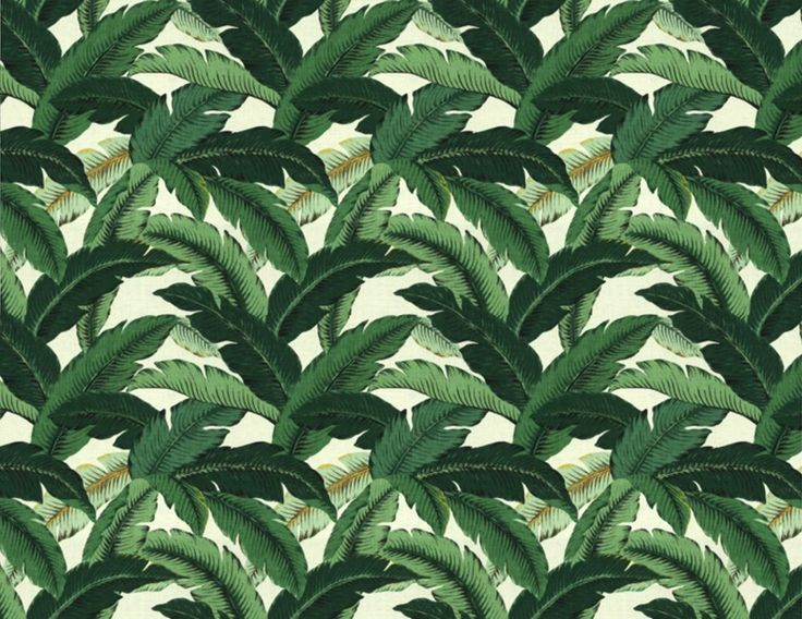palm print, blogger