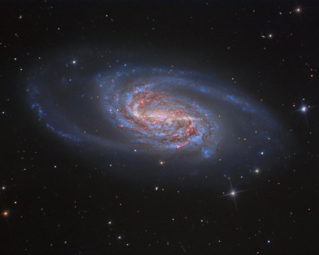 NGC 2903 : Viên đá quý bị mất tích của Sư tử. Tác giả và bản quyền hình : Tony Hallas.