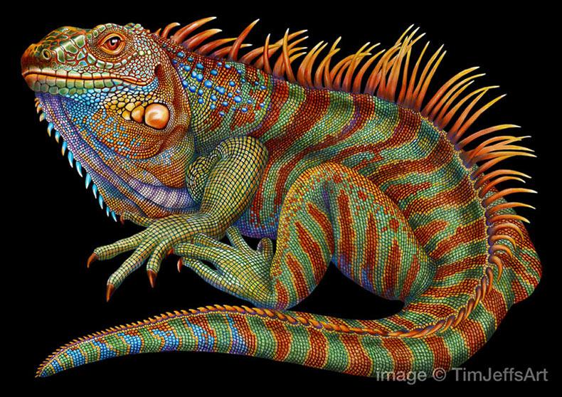Tim Jeffs dibuja lagartos increíblemente detallados utilizando lápices de colores