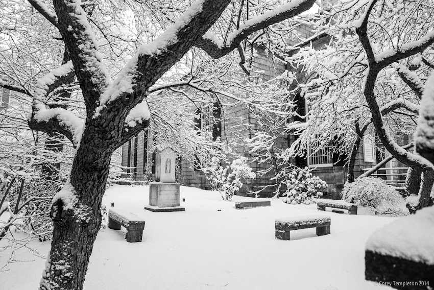 Portland, Maine Winter Snow January 2014 Congress Street photo by Corey Templeton