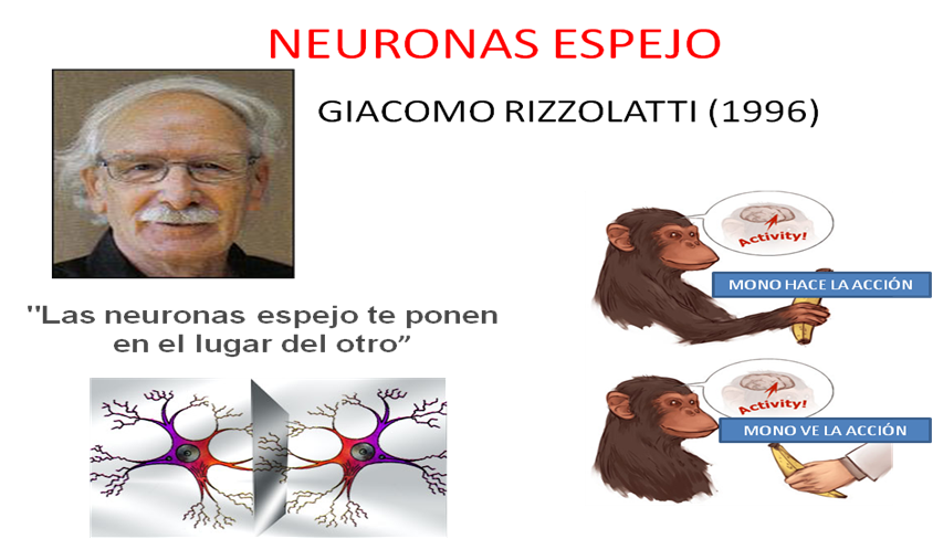 Escuela argentina de neuroaprendizaje competencias for Espejo unidireccional psicologia