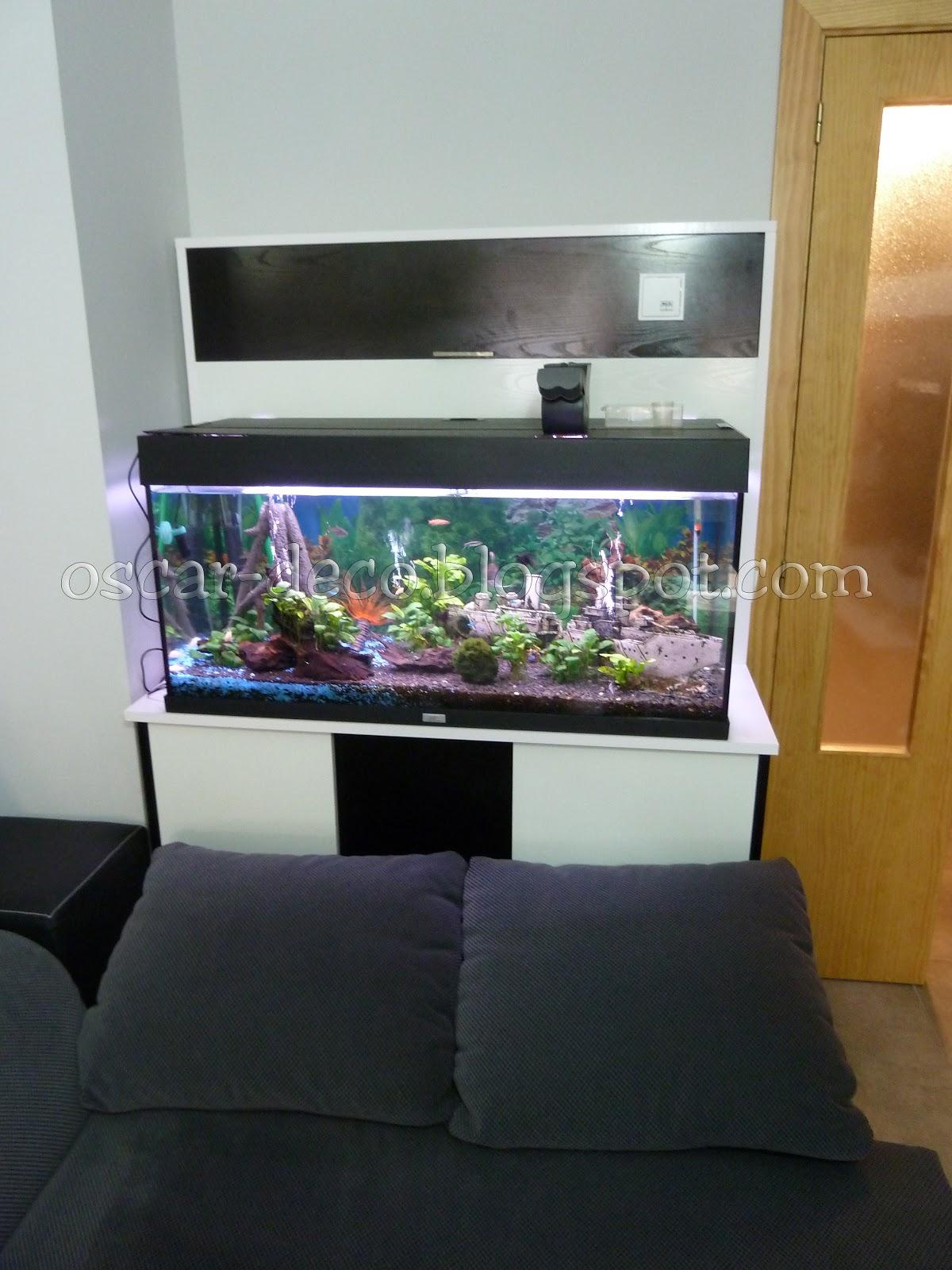 Mueble acuario decora tu casa for Mueble acuario