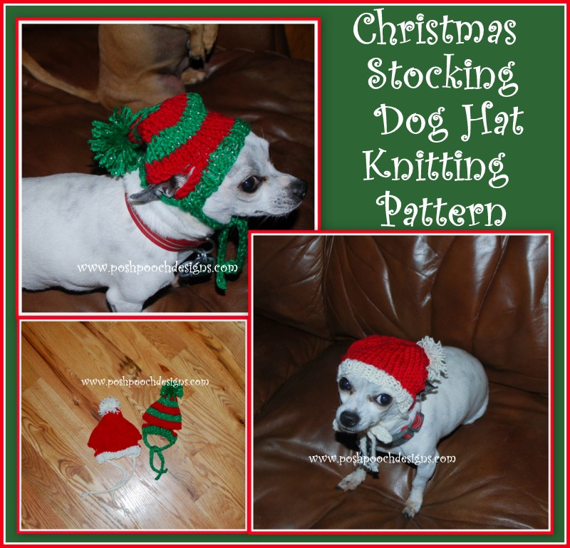 Posh Pooch Designs Dog Clothes: Christmas Stocking Dog Hat ...