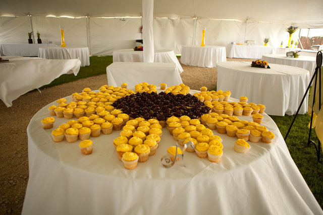 Beautiful bridal sunflower wedding cupcakes sunflower cupcake centerpiece junglespirit Images