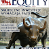 Equity Magazine nr 17 - strategia CCI