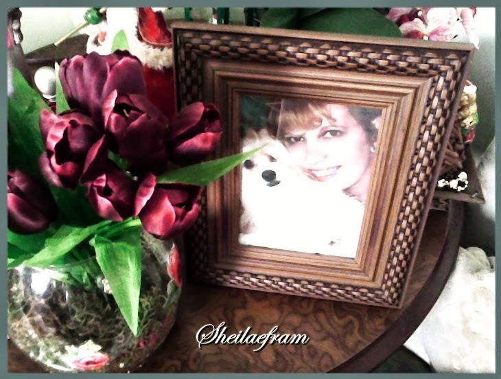 Blog sheilaefram