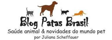 Blog Patas Brasil