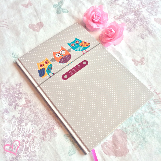 2016 resolutions cute diary