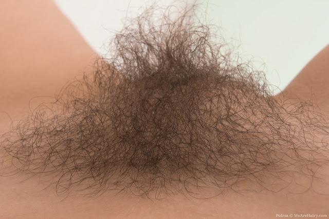 FotosNua.Com buceta cabeluda