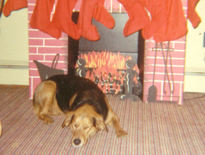 dog sleeping by Christmas fireplace