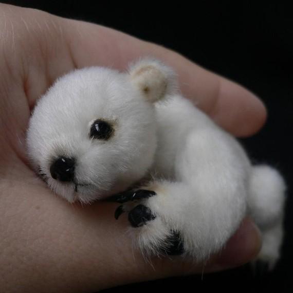 Miniature Polar Bears |The Odd Blogg