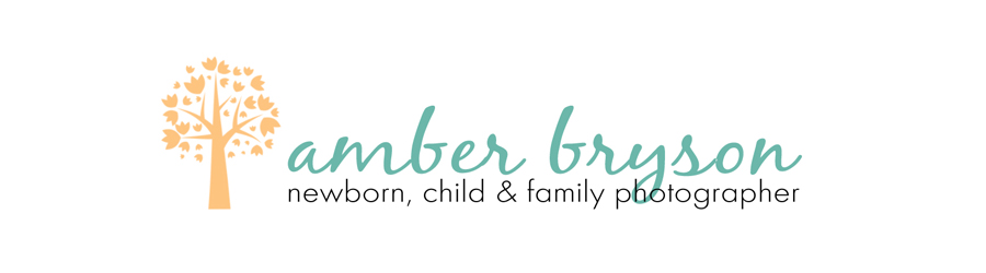 Amber Bryson - Utah County Photographer