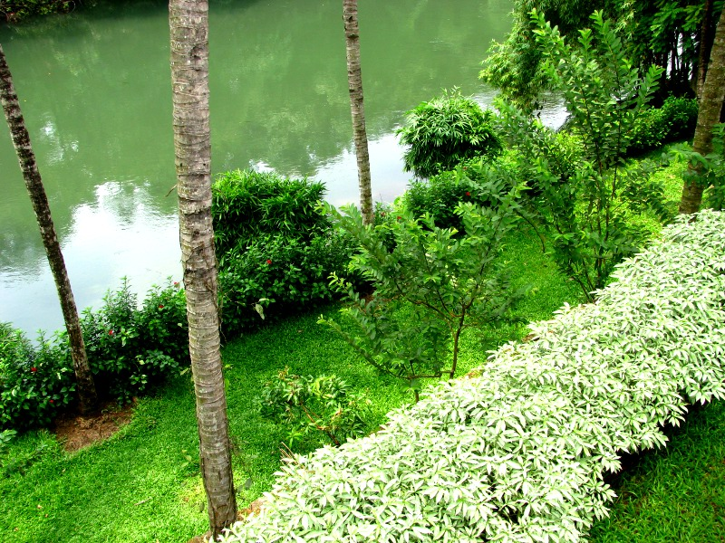 Picturespool Kerala Beautiful Natural Pictures
