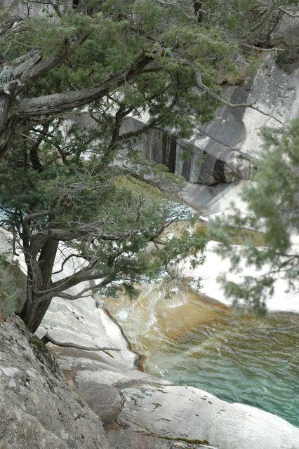 Location Particulier Corse Du Sud Piscines Naturelles De