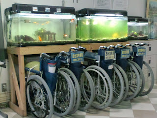 写真:水槽と車椅子
