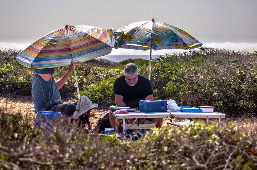Científicos del Grupo de Ecología de Poblaciones trabajando