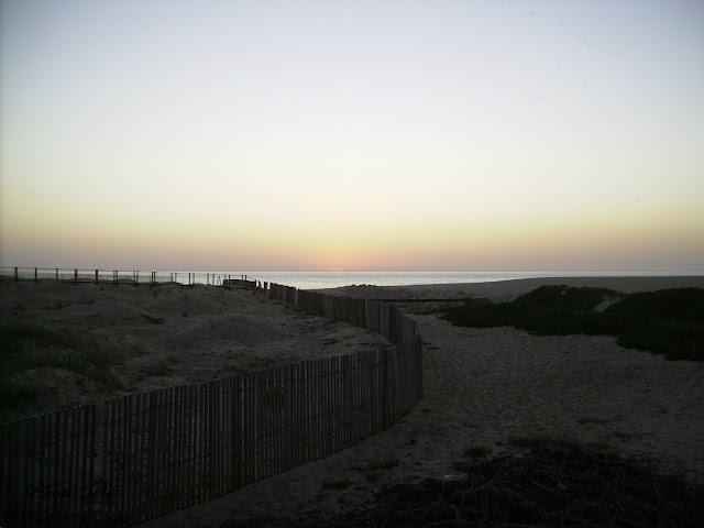 O cair da noite traz-nos sempre uma nostalgia de final do dia. Nesta fotografia podemos ver em primeiro planos umas dunas protegidas  e o amarelo do pôr-do-sol  num dia de céu limpo.